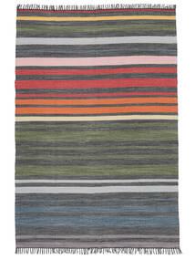 Rainbow Stripe - Grå Teppe 160X230 Ekte Moderne Håndvevd Lys Grå/Mørk Grå (Bomull, India)