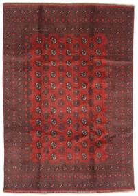 Afghan Teppe 200X288 Ekte Orientalsk Håndknyttet Mørk Rød/Mørk Brun (Ull, Afghanistan)